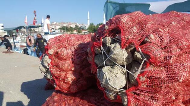 Her yıl 600 ton Uzakdoğu ülkelerine ihraç ediliyor