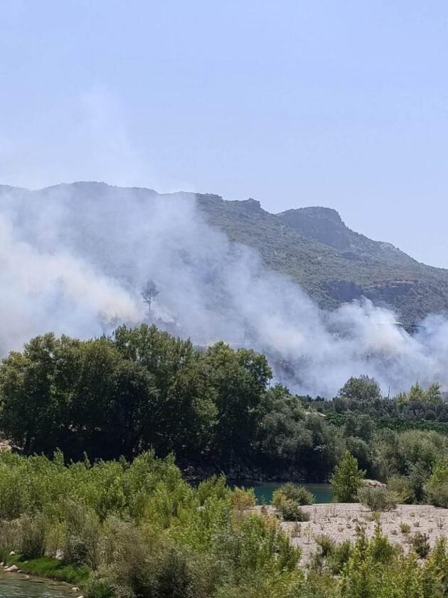 Manavgat'ta korkutan orman yangını