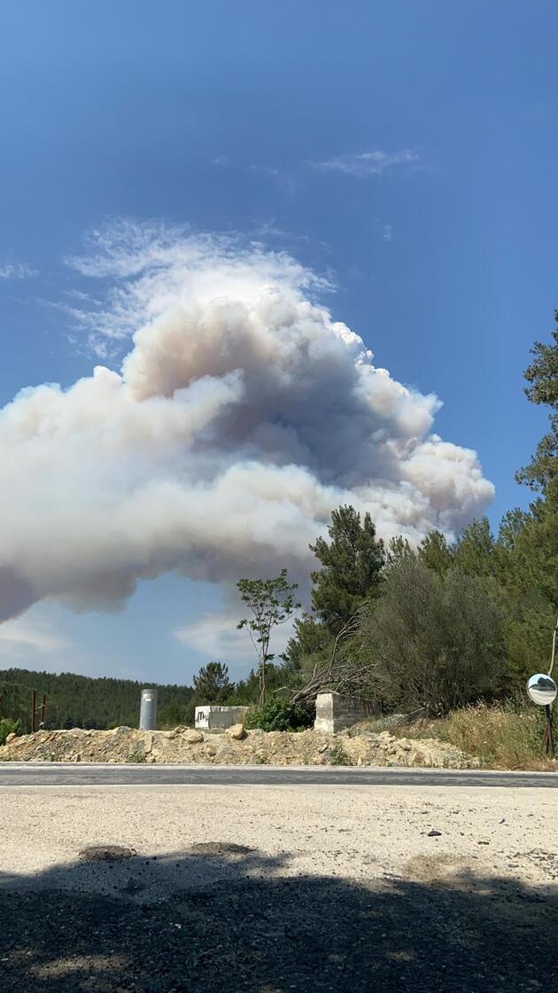 Son dakika haberi: Bakan Pakdemirli'den Gelibolu'daki orman yangınıyla ilgili açıklama