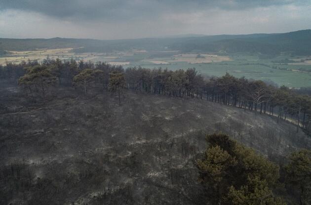 Gelibolu'daki yangının boyutu gün ağarınca ortaya çıktı