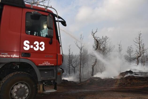 Gelibolu'da tarlaları yanan köylülerin üzüntüsü