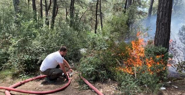 Son dakika... İstanbul Sarıyer'de ormanlık alanda yangın