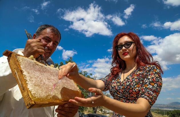 Lavanta balının kilosu 300 TL!