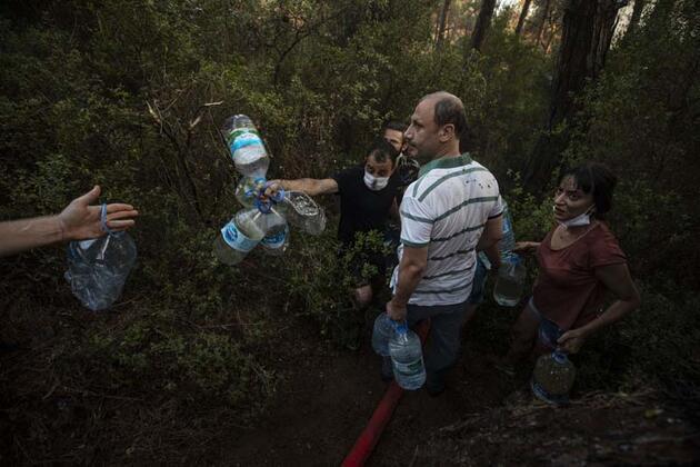 Heybeliada'da 5 hektar ormanlık alan kül oldu