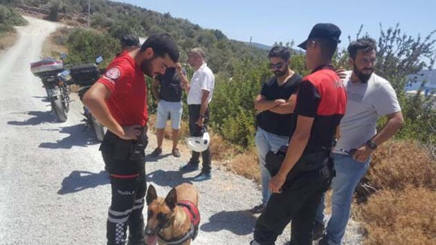 Tersane işçilerinin beslediği köpek, insana ait kafatası buldu