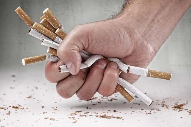 Vücuttaki nikotini temizliyor!