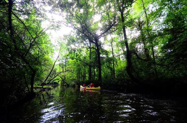 İstanbul'a yakın! İğneada Longoz Ormanları'nda kano keyfi
