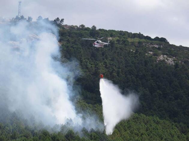 Son dakika... Aydos Ormanı'nda yangın