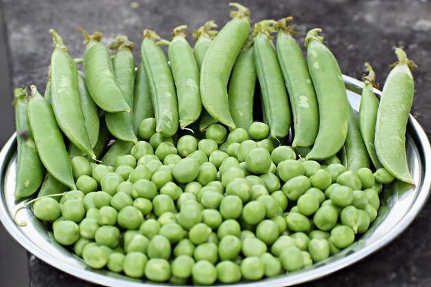 Kolesterol düşmanı besinler