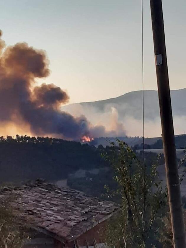 Son dakika haberi: Çorum'da orman yangını