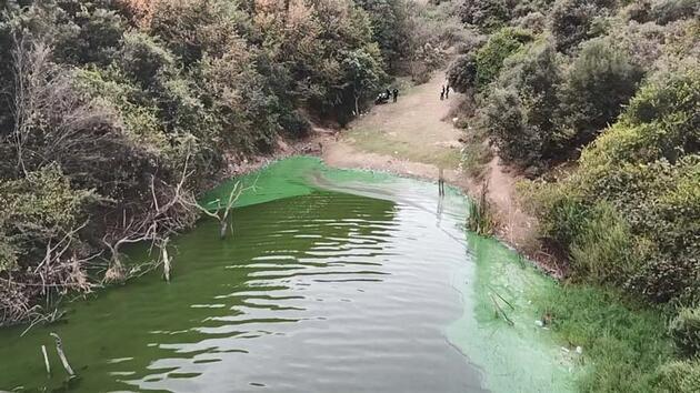 Son dakika... Eyüpsultan'da göle kimyasal atık boşalttılar