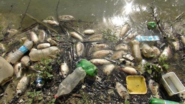 Son dakika.. Yapraklı Baraj Gölü'nün çevresi çöplüğe döndü