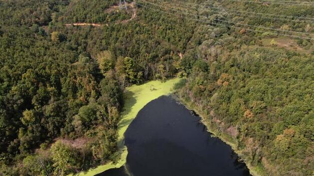 Elmalı Barajı yine yeşile büründü... Doluluk oranı 32.53'e düştü