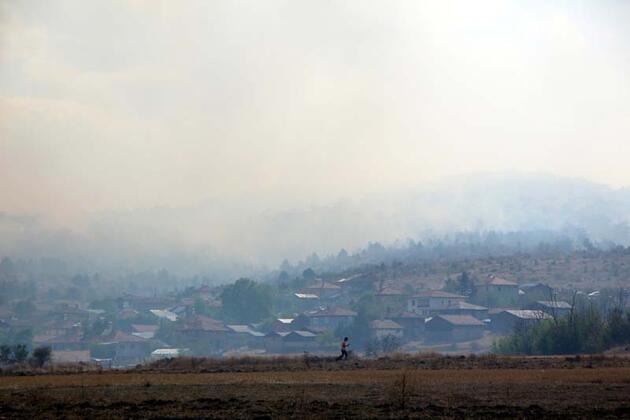 Son dakika... Bolu'da orman yangını