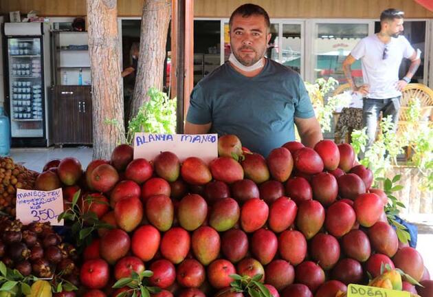 Antalya'da yetişiyor! Kilosu 350 lira