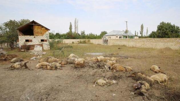 Yeni görüntüler paylaşıldı! Ermenistan yine sivilleri hedef aldı