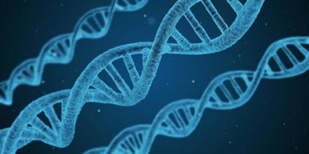 Son dakika... Ağır koronavirüs vakalarından Neandertal genleri mi sorumlu?
