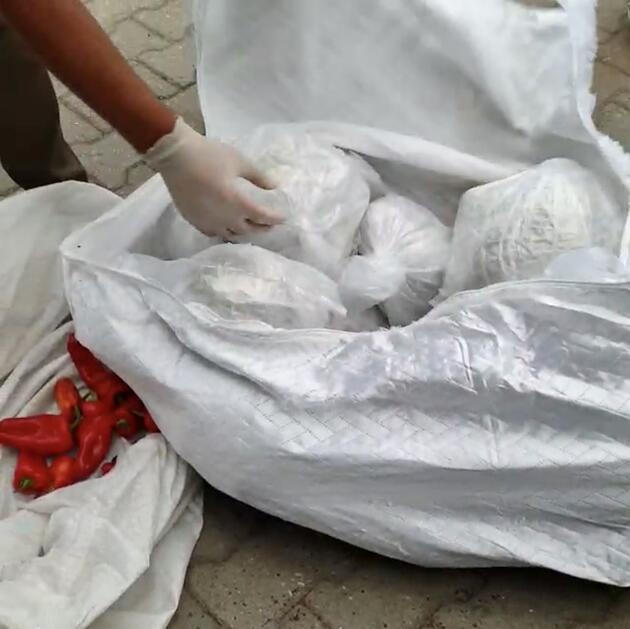 Son dakika haberi... Sakarya'da 52,5 kilo 'esrar' ele geçirildi: 5 tutuklama