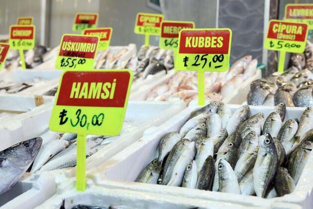 Son dakika... Tedirgin eden iddia! Balon balığını sokak aralarında 'mezgit' diye satıyorlar