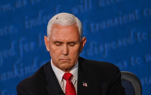 ABD'de başkan yardımcısı adaylarının tartışmasına 'sinek' damga vurdu