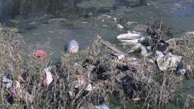 Ayamama'daki çöp ve pislik isyan ettirdi