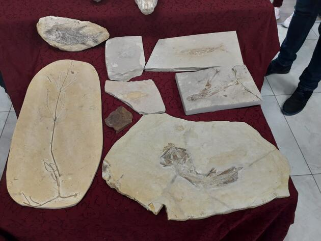 Adnan Oktar'ın Ankara'daki evlerinden milyon dolarlık fosiller çıktı
