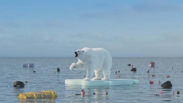 Kuzey Kutbu alarm veriyor: Bu yıl ilk kez donmadı