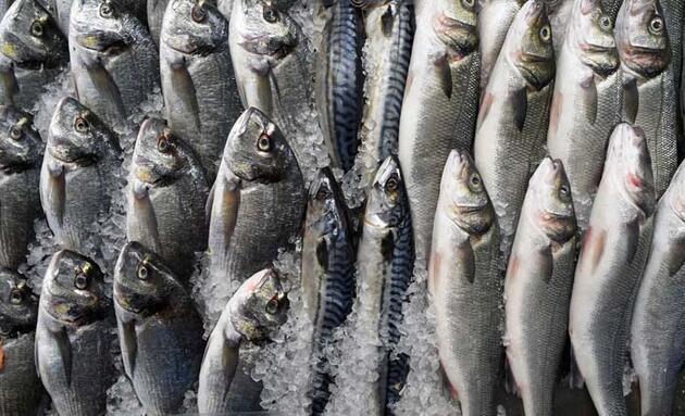 Sakın böyle pişirmeyin! Bu balıklar alerjiye neden oluyor