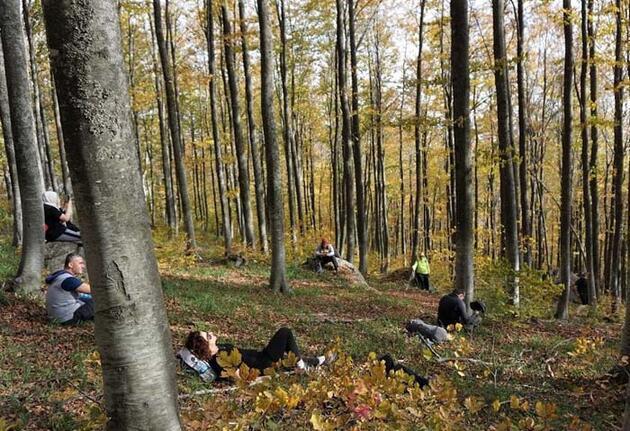Sonbahar renklerine bürünen Türkmen Dağı mest etti