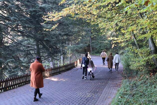 İstanbul'un yanı başındaki doğa harikası! Günübirlik tatilcilerin akınına uğruyor