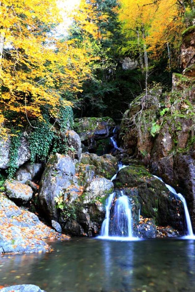 Türkiye'nin oksijeni bol en güzel yerlerinden biri