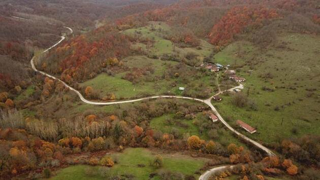 Istranca ormanlarında sonbaharın son demleri... Gören hayran kalıyor
