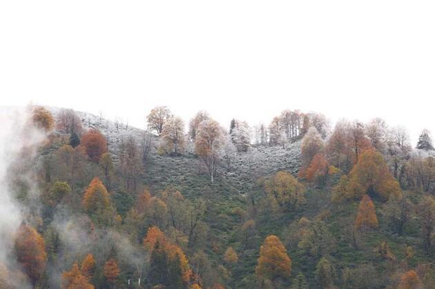 Türkiye'nin cennet köşesi 'Macahel'de sonbahar bir başka güzel!