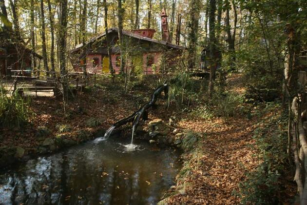 """Sonbaharın renk cümbüşünün yaban yaşamla gözlemlendiği adres: """"Ormanya"""""""