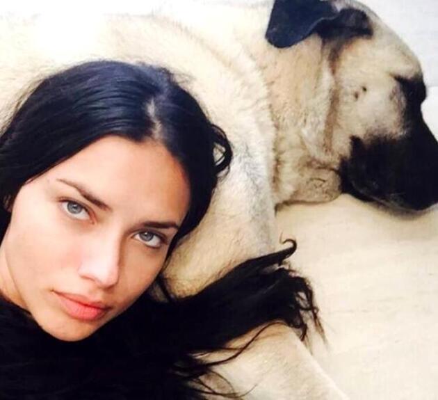 Adriana Lima'ya Sivaslılardan çağrı: Üçüncüsü bizden olsun