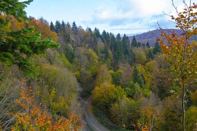 Sonbaharın doğaya yansıyan tonları görenleri cezbediyor! Muhteşem manzara