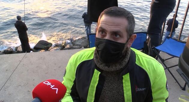 Üsküdar'da korkutan görüntü! Binlercesi kıyıya vurdu