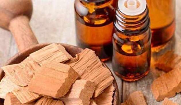 Bilinen en güçlü doğal antibiyotik: Udi Hindi bitkisinin faydaları neler?