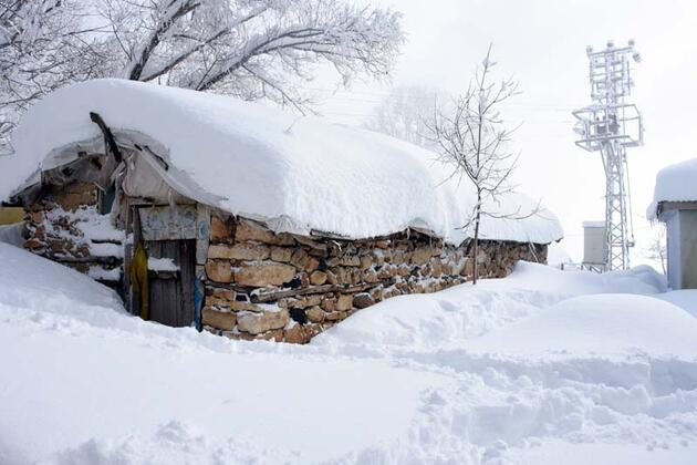 Muş'ta tek katlı evler kara gömüldü