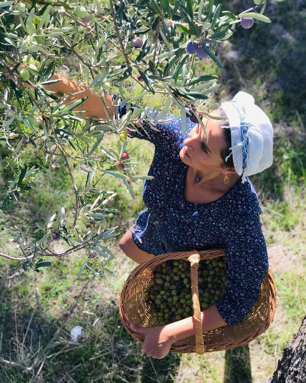 Oyuncu Aslıhan Gürbüz, zeytin yetiştiriyor