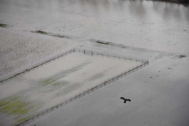 Sağanak nedeniyle tarım arazileri su altında kaldı