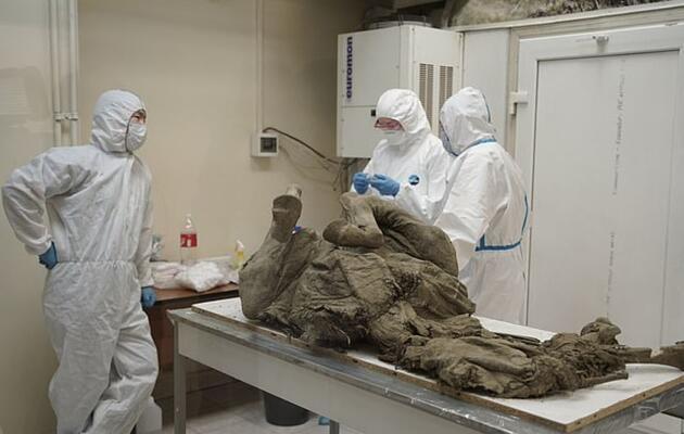 Rus bilim insanları, 50 bin yıl önceki virüsleri tespit etmeye çalışıyor