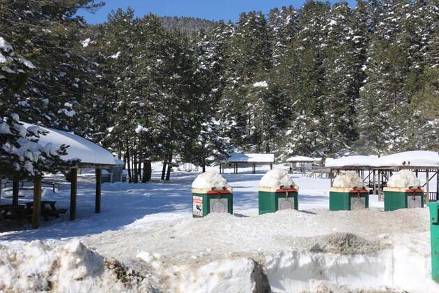Abant Tabiat Parkı en sakin günlerini yaşıyor