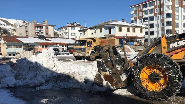 250 ton kar, kamyonlarla taşındı