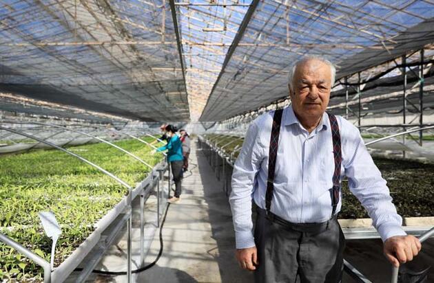 50 kat daha acı 'Antalyalı Şili', isota rakip