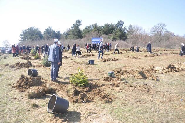 Cumhurbaşkanı Erdoğan'ın doğum gününde 'hatıra ormanı' oluşturuldu