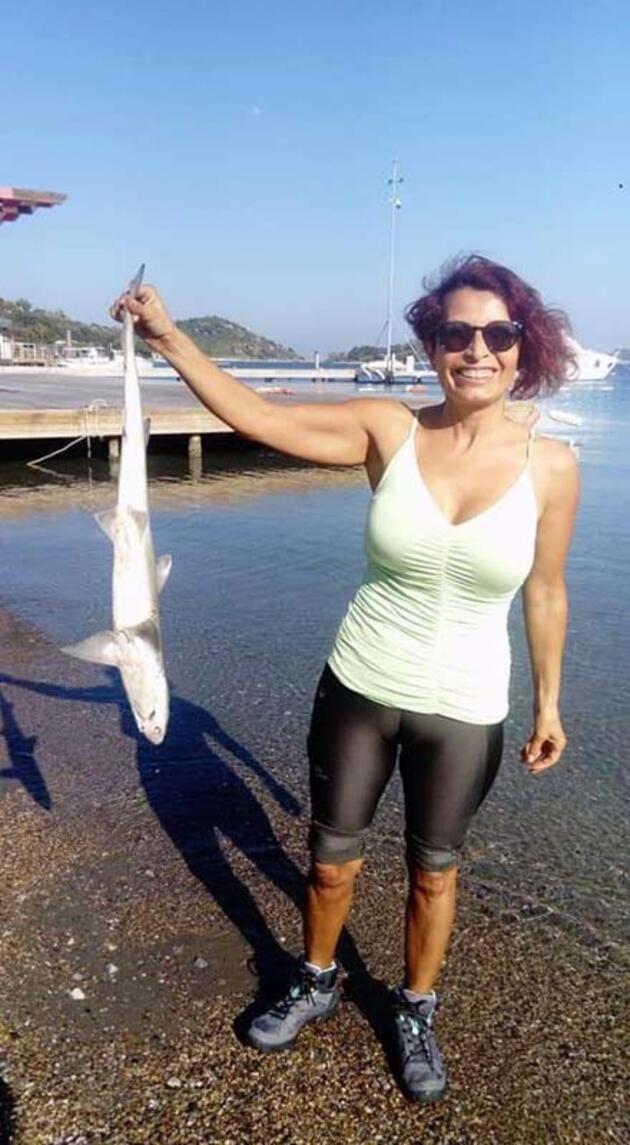 Bodrum'da sahile ölü köpek balığı vurdu