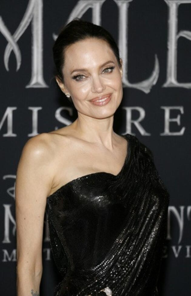 Angelina Jolie sahibi olduğu Churchill tablosunu 8,3 milyon sterline sattı