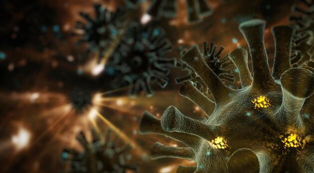 """Brezilyalı bilim insanından dünyaya uyarı: """"Daha ölümcül mutasyonlar çıkabilir"""""""