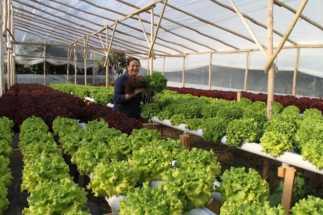 Ev kadınıydı çiftçi oldu, ayda 4 bin lira kazanıyor